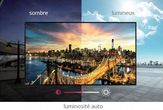 Écran vitrine LG XS2E